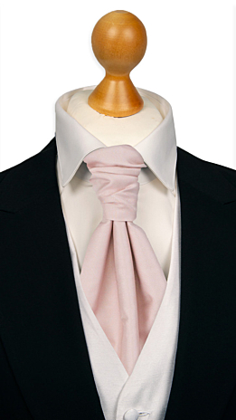SOLID Dusty pink Plastron